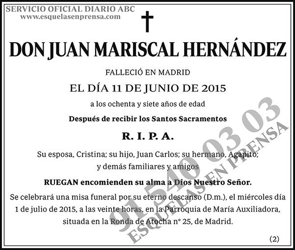 Juan Mariscal Hernández